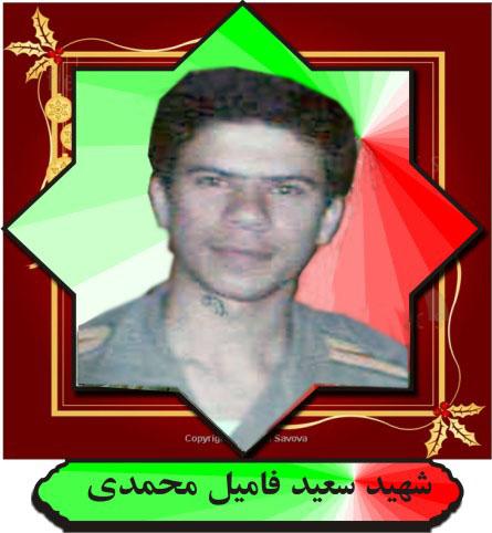 شهید سعید